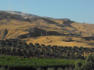 Israelsk bosetting i den okkuperte delen av Jordandalen. Foto: Ilana Skolnik